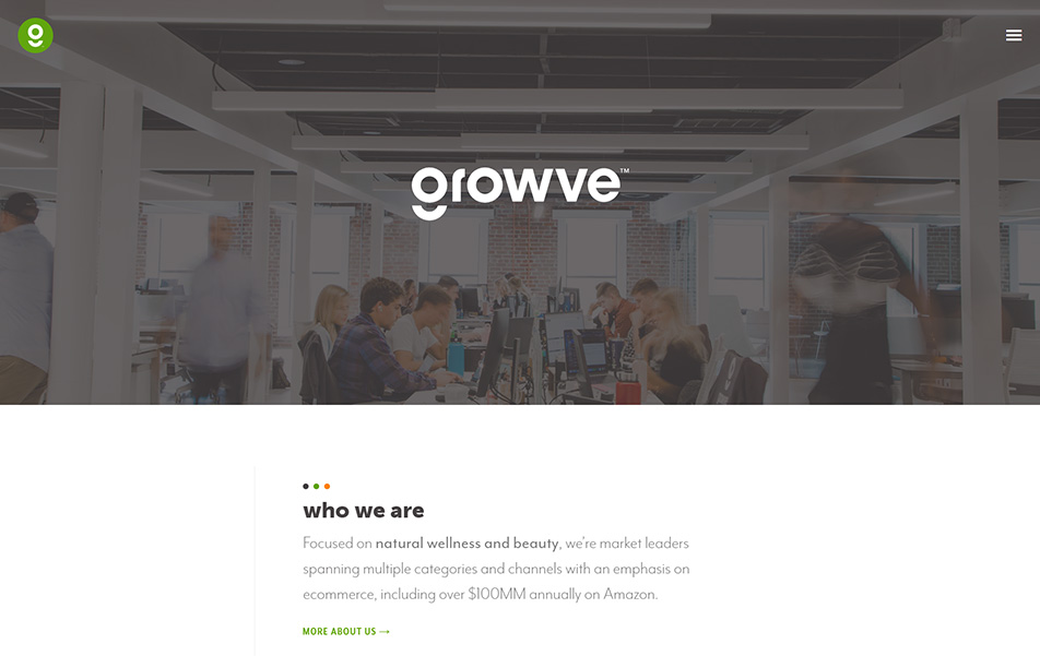 Screenshot of growve website homepage